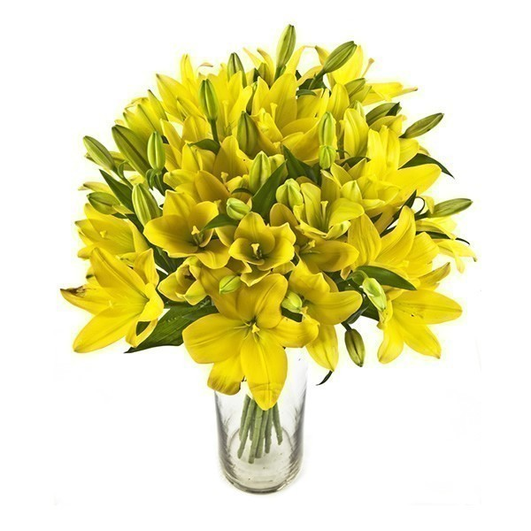 Spray of Yellow Lilies